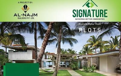 al-najm-signature-in-282-1623997547685