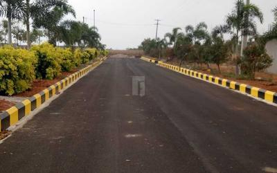 nature-s-yadadri-ambience-in-779-1625732100922