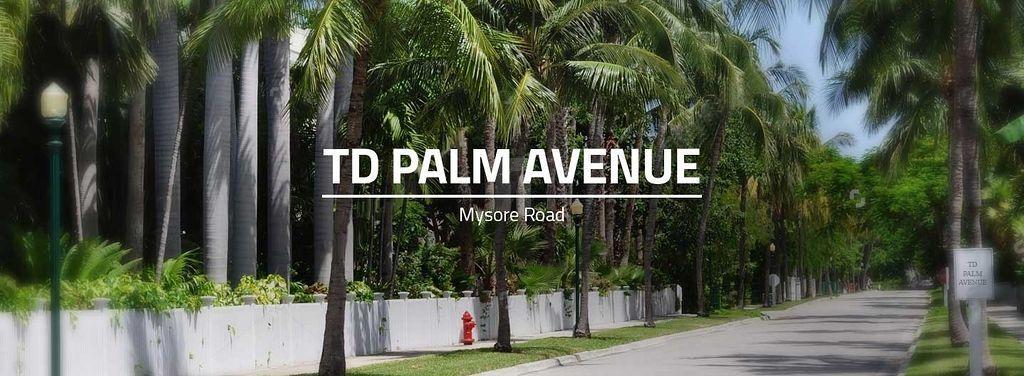 TD Palm Avenue - Project Images