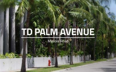 td-palm-avenue-in-mysore-road-elevation-photo-1fab