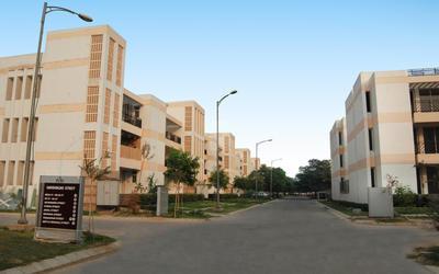 puri-vip-floors-in-sector-81-1mxg
